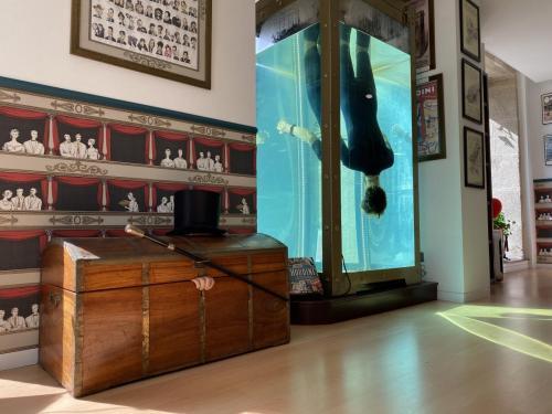 tanque de agua de escapismo de Houdini / mago Antón